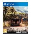 Thüberbrook PS4